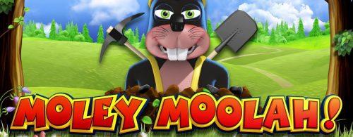 Moley Moolah Video Slot